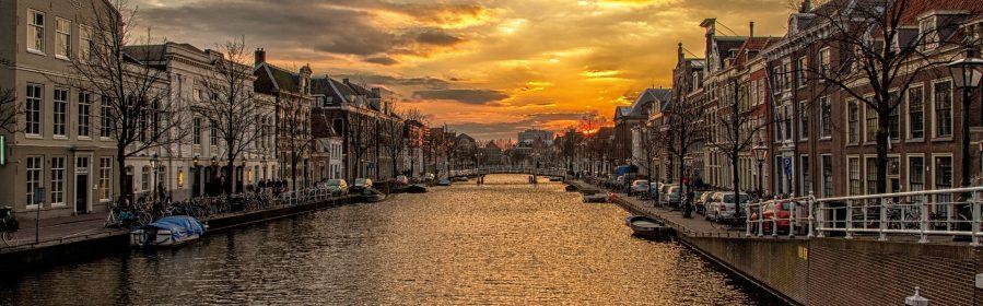 Praca sezonowa w Holandii
